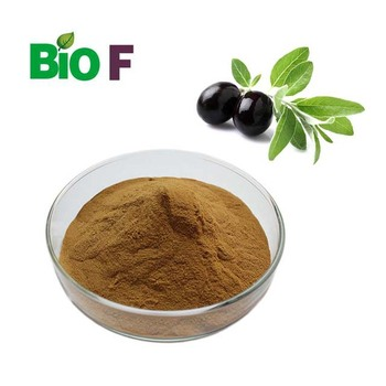 Manufacture Natural oleuropein organic olive leaf extract capsules