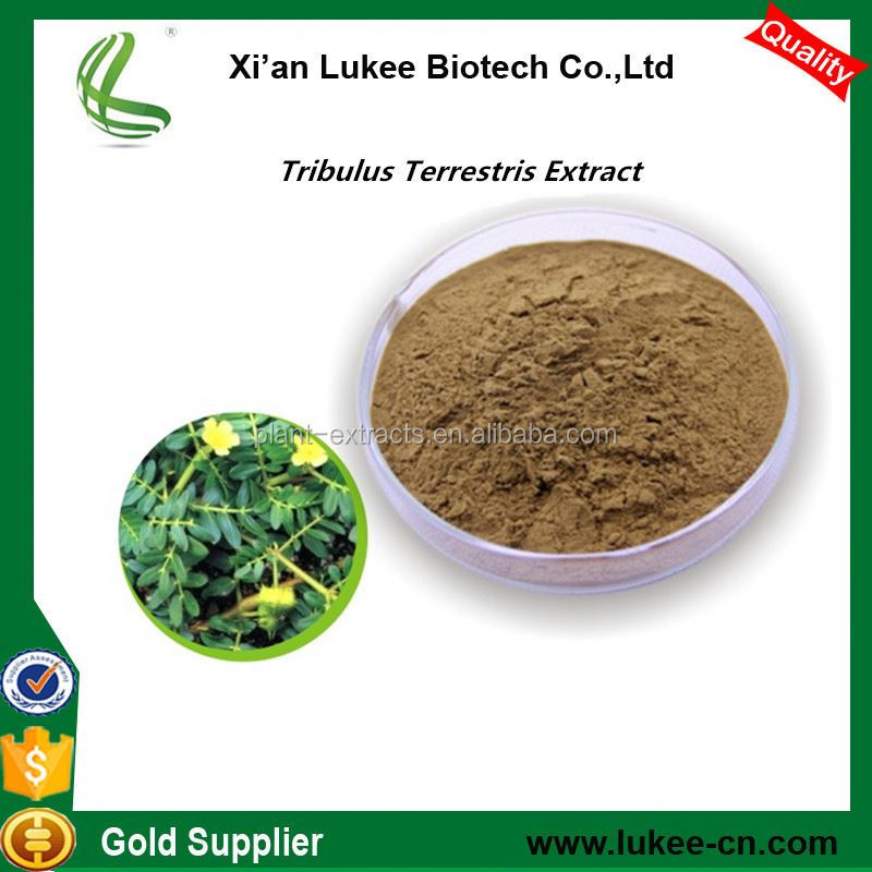 Chinese Plant Extract Tribulus Terrestris Extract 90% for Sex Medicine