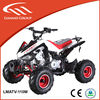 china dune buggy 110cc four wheels with CE/EPA