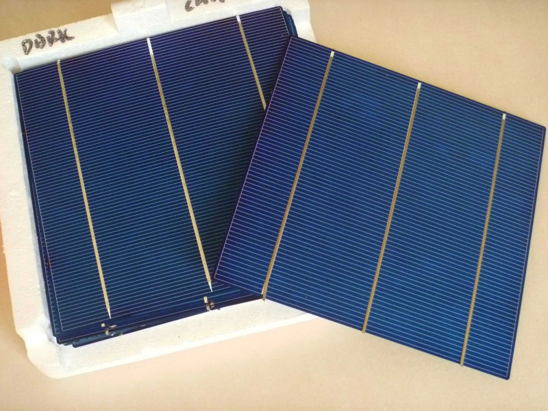 156mm 3 bus bar Poly-crystalline Solar Cell