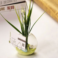 Decorative flower vase Business Card Holder