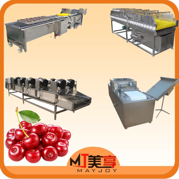 jujube/cherry/olive/plum/apricot pitter /seed removing machine