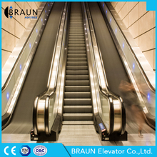 Braun Elevator Home Escalator