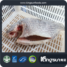 FROZEN 80% N.W. HEAD OFF GILL OFF GUTTED TAIL OFF FIN OFF TILAPIA WITH SIZE 100/200/300/500G