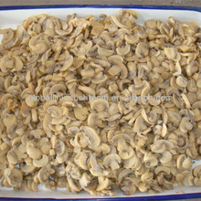 scientific name of mushroom 400g/200g