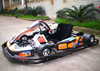1 man go kart fast cheap/1 seat go kart/160cc 200cc honda go kart beautiful and charming