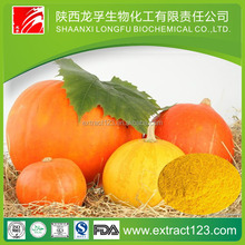 Alibaba Supply Natural dried pumpkin / pumpkin powder ,vietnamese pumpkin