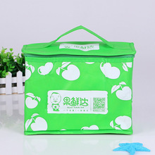 Promotion handy fruit school child picnic cool bag insulated lunch bag for kids