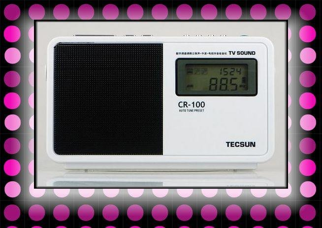 Retail-Wholesale Tecsun CR-100 radio usb am fm sw