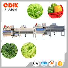 Automatic Leafy vegetables washing line