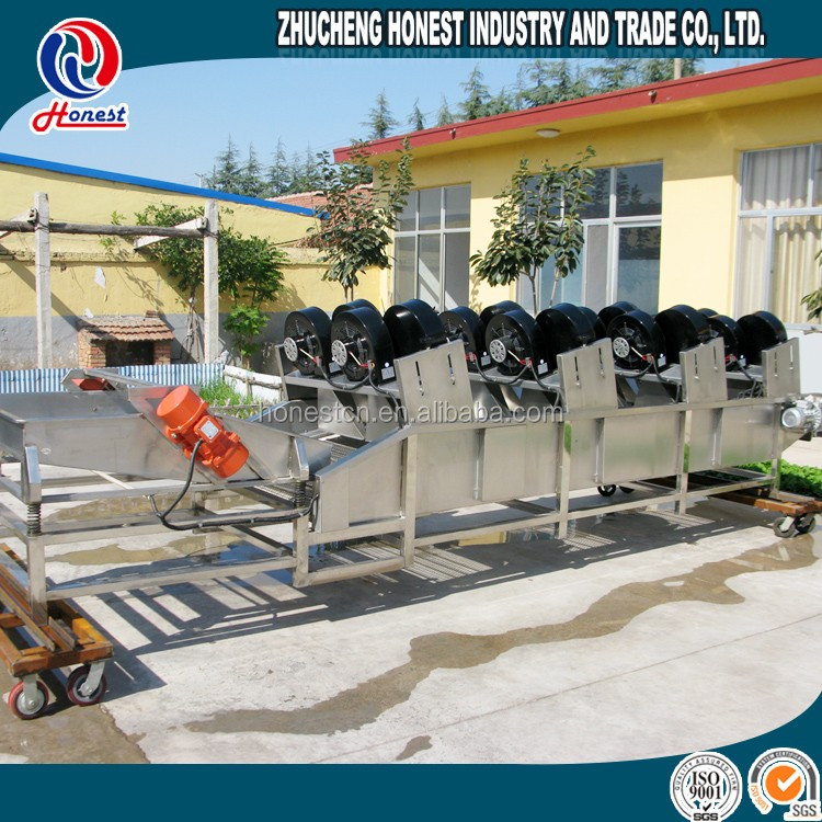 China Air Flow Dryer Dried Fruit Processing Machine Apply To Dry Fruit