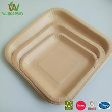 wort plate chiller disposable kraft paperplate