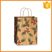 Professional Manufacture Cheap Paper Christmas Shopping Bag