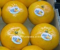 Fresh Fruits - Mandarin Orange from Pakistan
