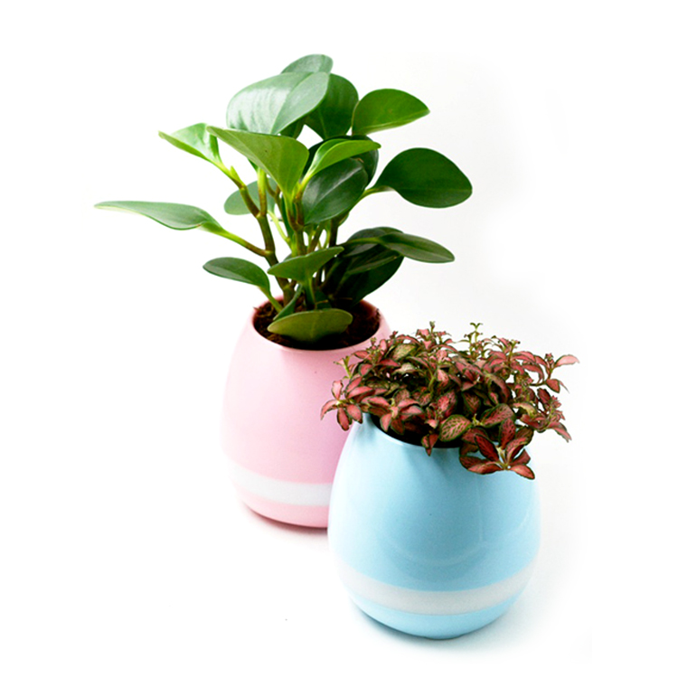 Shenzhen Giftoy Produce Newly Bluetooth Speaker LED Flower Pot with Piano Playing Function
