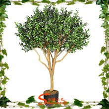 Evergreen ornamental plants plastic bonsai tree for decor olive tree