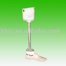 below knee Artificial Limbs complete Components(D)