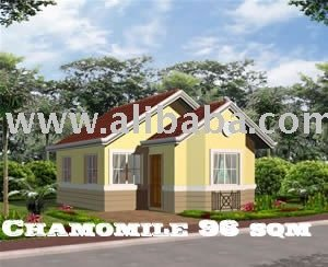 House and Lot for sale Bicol Region Naga City Camarines Sur Philippines