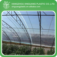 Cheap sell tunnel plastic greenhouse film agriculture at Hangzhou xinguang plastic factory