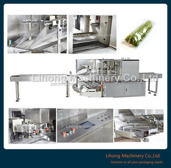 Factory Price Horizontal Vegetable and Fruit Flow pack Wrapping Machine
