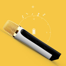 Cheapest Price Wireless Speaker One Button Easy Switch Karaoke Microphone
