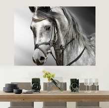 Framed Printed Horse Oil Painting Living Room Wall Art Paint Animal Prints On Canvas Art