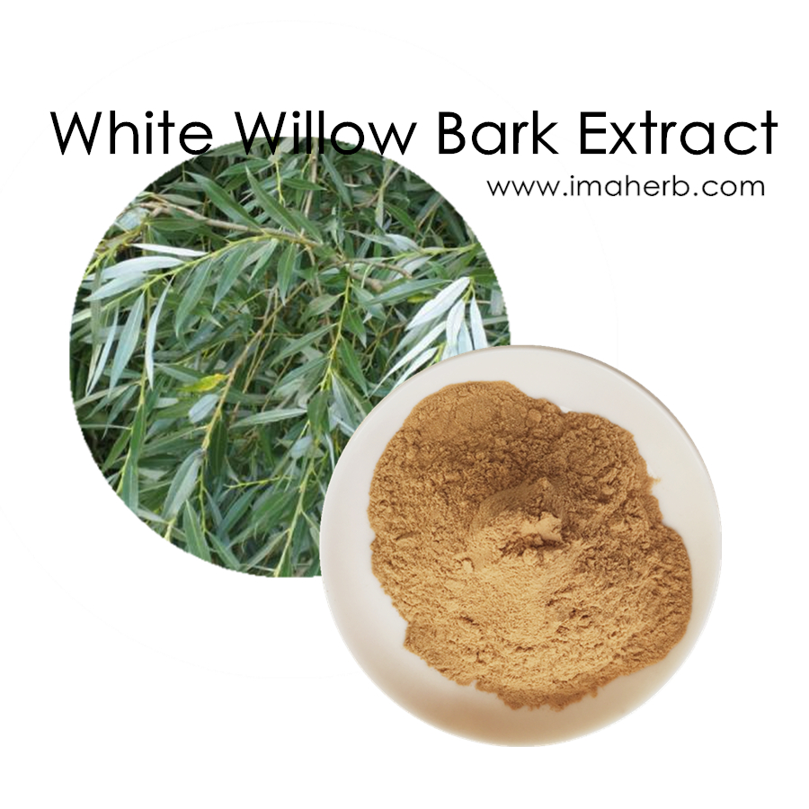 High quality health care white willow bark p.e./white willow bark extract