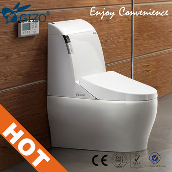 Portable toilet price Guangdong Smart Toilet