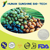Natural Cosmetic Raw Material Antioxidant Saw Palmetto Extract