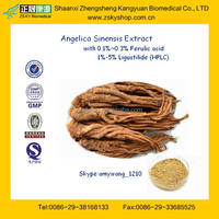 Top Quality Angelica Extract / Angelica Root Extrac