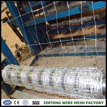 5feet Hot Dipped Galvanized Farm Fencing Wire