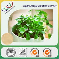 free sample HACCP KOSHER FDA supplier 10%~90% asiaticoside powder gotu kola extract