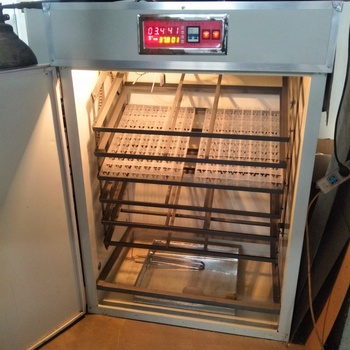2019 competitive price large capacity 10000 egg incubator machine cheap egg incubator