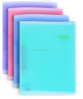 Assorted Color Sliding Folder/ File Folder office & school supplies
