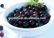 factory supply acai berry extract from acai berry softgel