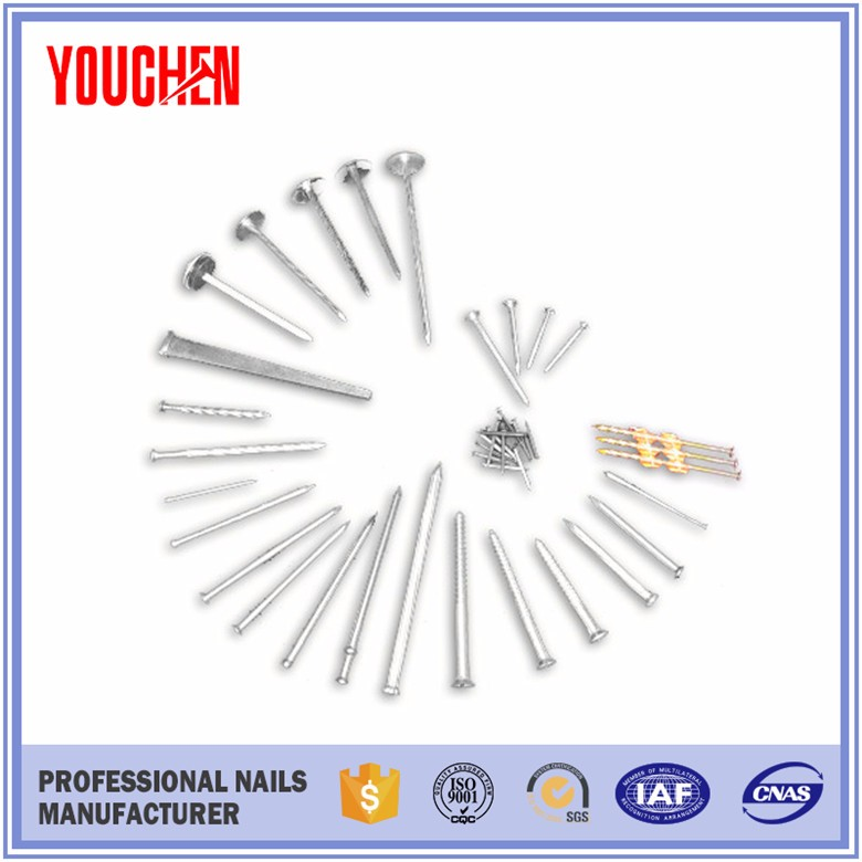 factory supply stainless hardened steel concrete nail