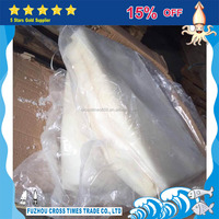 2 years shelf life fresh frozen giant squid fillets