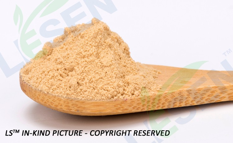 Hot Selling 100% Natural Kelp Extract Powder Fucoxanthin