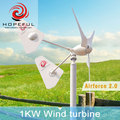1kw off-grid twin tails patent solar hybrid use turbine China made