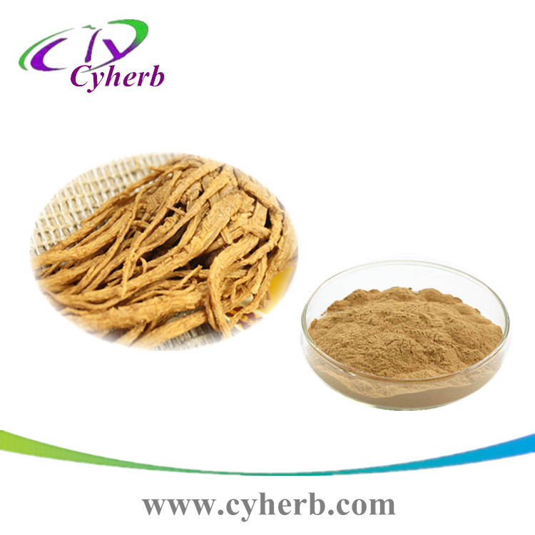 Angelica root extract powder 10:1 in stock