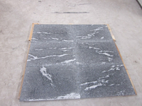 Chinese Black granite Via Lactea flamed tiles