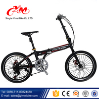 20 inch folding bike/mini folding bicycle/bicycle for girl and boy