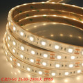 DC12V DC24V Flexible 5050 Waterproof LED Strip
