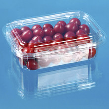 Custom Design Disposable Plastic Fruit Punnet with top and bottom vent hole