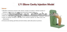 medical science teaching model clinical skill training model ---L71 Elbow Cavity Injection Model