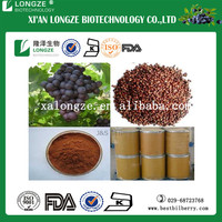 ISO Certified Grape Seed Extract softgel , Nutritional Supplement Grape Seed Extract with proanthyanidins 95% UV