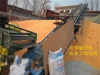 EP/Polyester conveyor belt for wheat