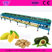 Fruit Sorting Machine/Dates Grading Machine