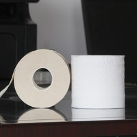 Help Earth Printed toilet seat paper Toilet Bamboo Pulp