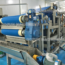 fruit Belt Press Extractor machine made in China